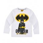 LEGO Batman/City